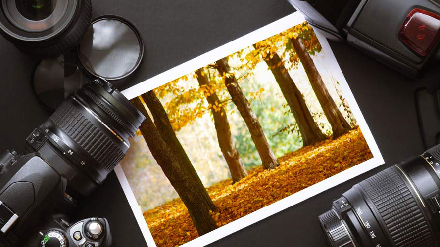 Learn how to take better photos with this course