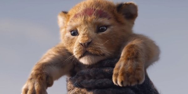 Baby Simba at Pride Rock in live-action Lion King 2019 film