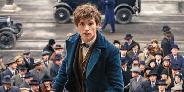 eddie redmaybe newt scamander fantastic beasts and where to find them