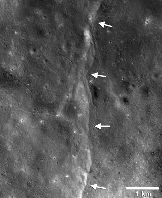 Lobate Thrust Fault Scarps on the Moon