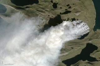 Smoke plumes from Greenland's largest wildfire on record can be seen in this Landsat-8 satellite image from Aug. 3, 2017.