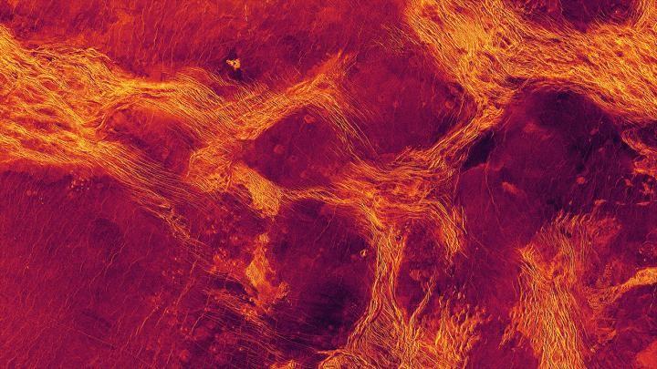 Venus has a gooey flowing mantle jostling crust chunks on its surface