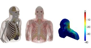 three bodily recreations. First on the left shows internal organs, the second showing muscles and the third showing changes in heat.