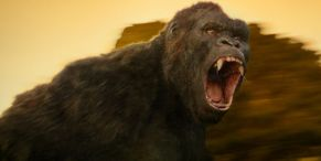 How Universal Studios Reportedly Handled Guest Who Wouldn't Follow Mask Rules On Skull Island Ride