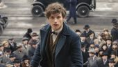 Fantastic Beasts Prop Reveals A Key Detail About Newt's Brother