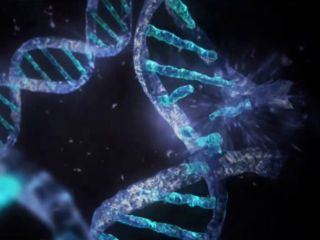 Space radiation breaks apart DNA in this artist's conception. Scientists are interested in how information flows between DNA, RNA and proteins.