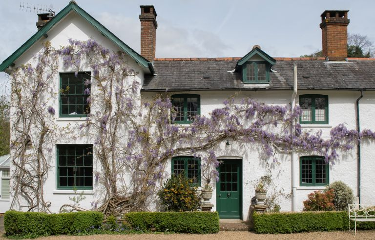 whitewashed part-Victorian part-Georgian home with wisteria