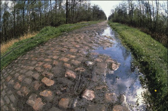 Iconic Places The Forest Of Arenberg Cycling Weekly