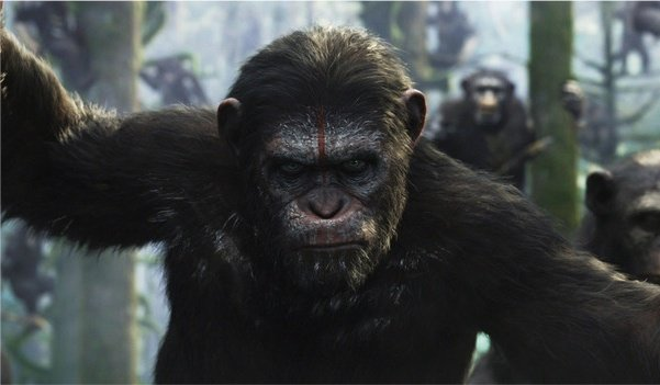 5 Incredible Facts You Need To Know Before Seeing Dawn Of The Planet Of The Apes