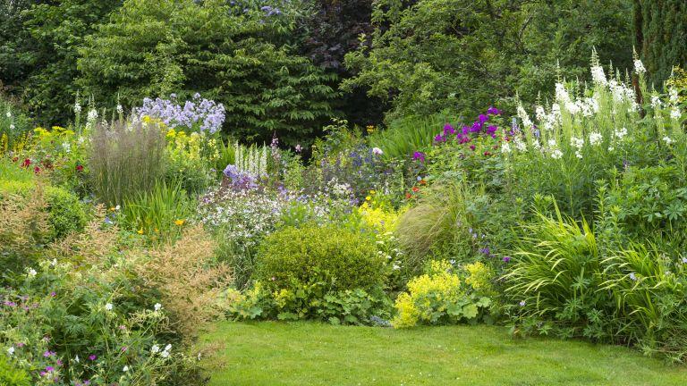 garden borders in a pretty cottage garden