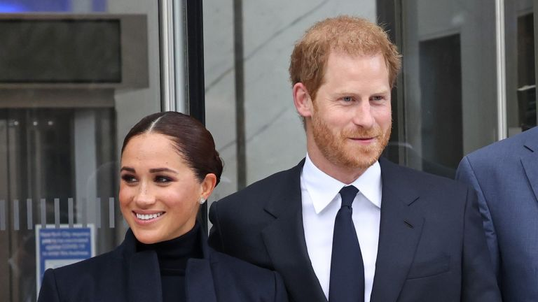 Harry and Meghan's new job at an investment bank revealed