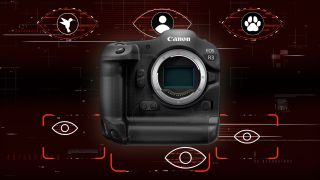 The Canon EOS R3 shoots at 30fps and enables you to move AF points with your eyeball – but there are plenty of unknowns