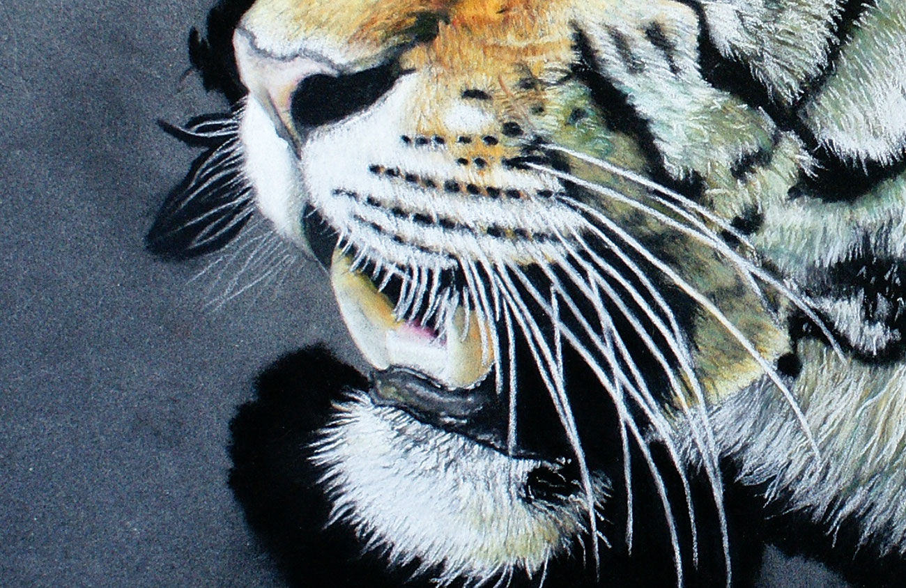 tiger painting with muzzle and mouth