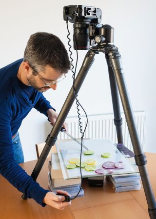 Photo hack: make a lightbox for shooting backlit photographs of food