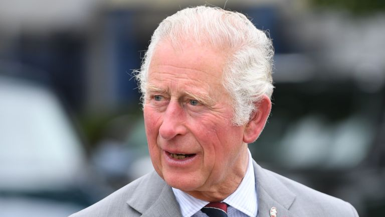Prince Charles, Prince of Wales, President of The Prince's Trust meets staff and young people involved in the 'Launched in Lockdown' Programme