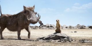 Timon and Pumbaa in the Lion King remake