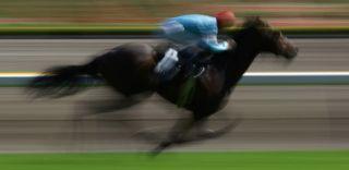 horse racing, jockey deaths, safety