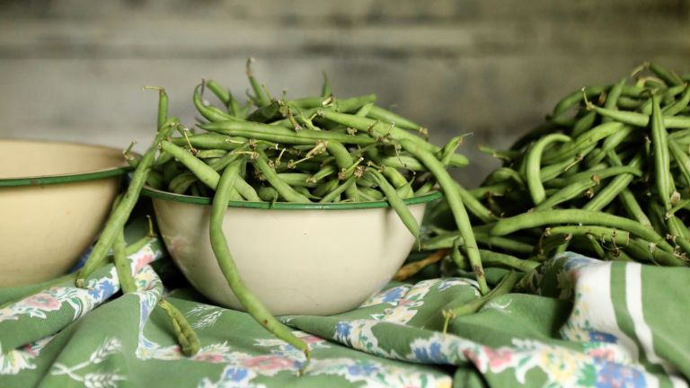 Monty Don's French Bean growing tips