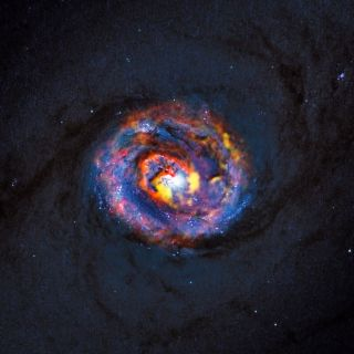 Galaxy NGC 1433 Composite View