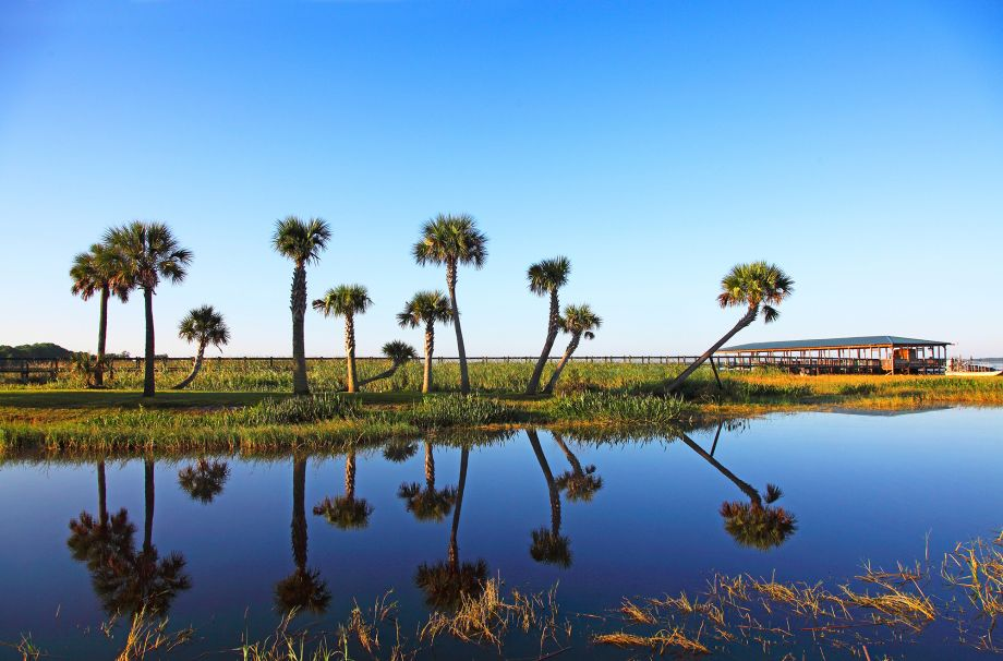 7 travel tips for a family holiday in Florida