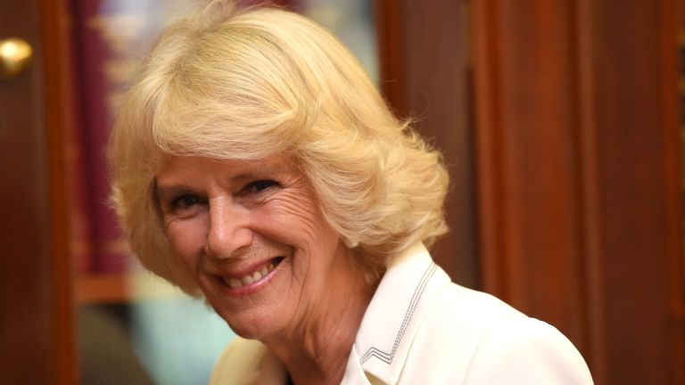 Camilla, Duchess of Cornwall looks at selection of opals from the South Australian Museum Opal Exhibition at Government House on November 10, 2015 in Adelaide, Australia