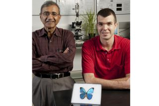 biomimetrics, animal-inspired engineering