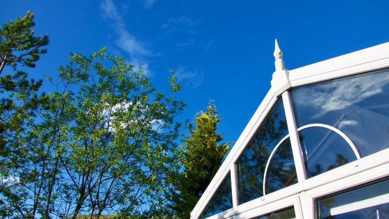 shot of a conservatory with lovely blue skies and green trees