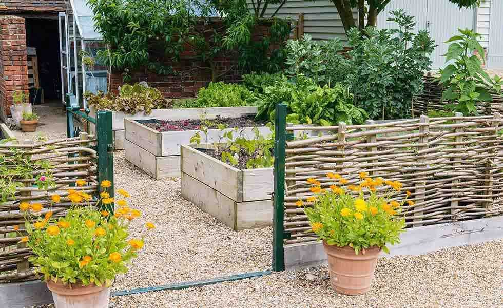 How to make a raised bed and where to buy kits online