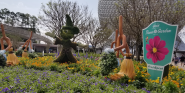 What Is The Epcot International Flower And Garden Festival? 6 Quick Things You Need To Know