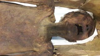 """The """"screaming mummy,"""" likely that of Prince Pentawere, a man who tried (likely successfully) to kill his own father pharaoh Ramesses III, is now on public display at the Egyptian Museum."""