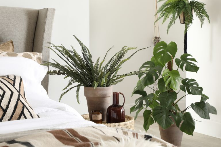 best plants for bedrooms: Kenley bed, Furniture Choice Ltd