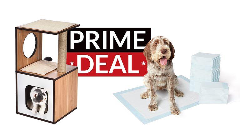 Amazon Prime Day pet supplies