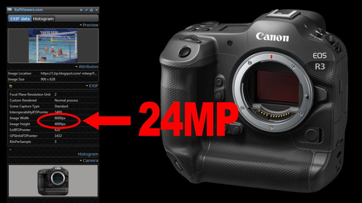 Backlash warning: Canon EOS R3 appears to have a 24MP sensor