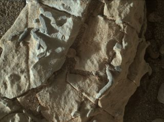 Curiosity Spots Weird Burrow-like Features on Mars