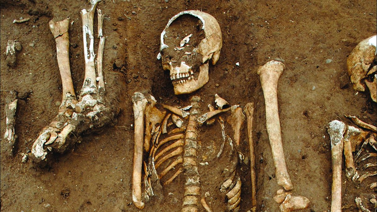 Plague victims in medieval mass grave were arranged with care by 'last chance' hospital's clergy