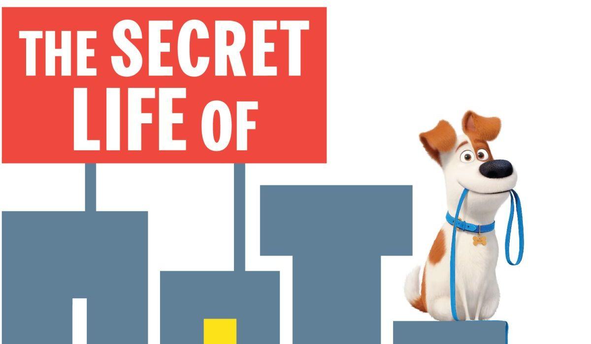 The Secret Life Of Pets: Off the Leash