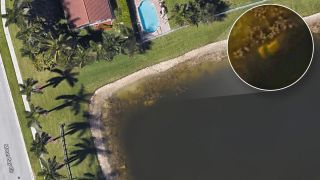 A Google Earth view shows the pond behind a Floria home. A white object is visible in the water.