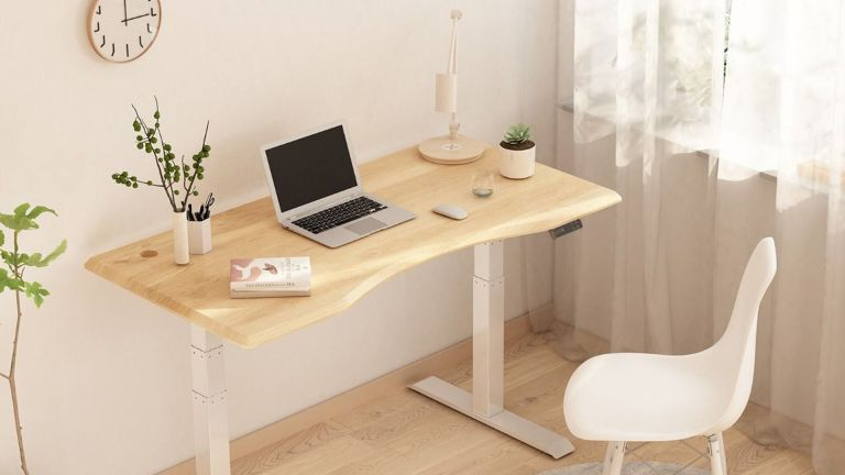 Flexispot Adjustable Standing Desk Pro E7 in situ