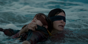 Wait, Is Netflix's Bird Box Getting A Sequel?