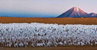 penitents, Atacama desert