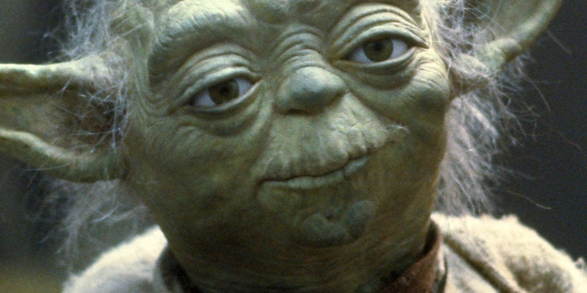 A sagacious Yoda