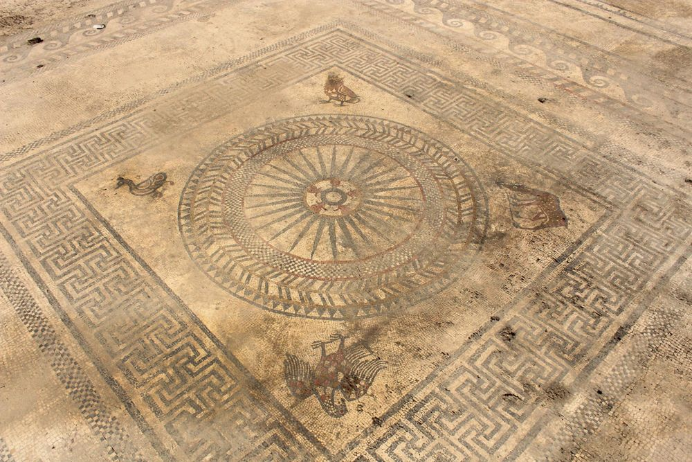 Elaborate Mosaics Unearthed in 'Lost' Roman City