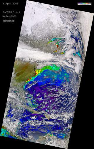 Gulf Stream SeaWiFS Image
