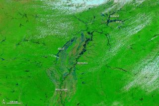 flooding-mississippi-110429-02