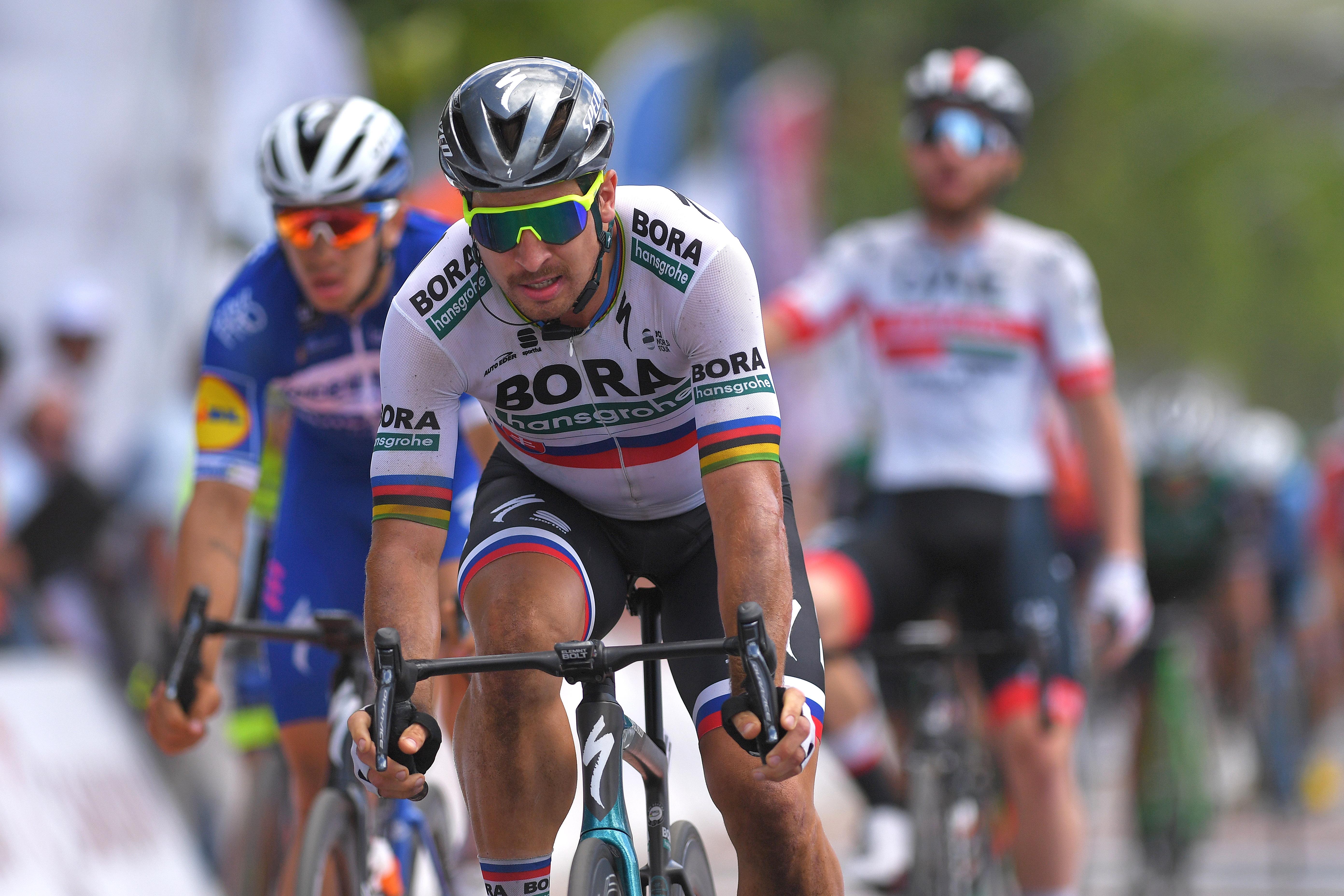 456466bc3 VALLE FÉRTIL - VILLA SAN AGUSTÍN, ARGENTINA - JANUARY 30: Arrival / Sprint  / Peter Sagan of Slovakia and Team Bora-Hansgrohe / during the 37th Tour of  San ...
