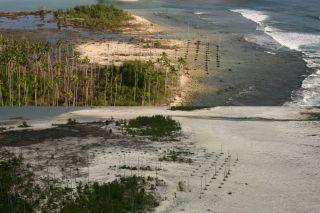 earthquakes, coral reefs, coral atol