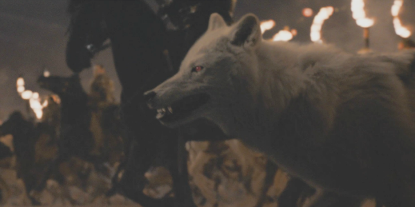 Game of Thrones Ghost HBO