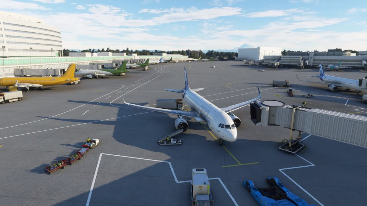 Microsoft Flight Simulator contains every airport in the world