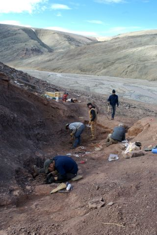 Scientists look for fossil evidence of Tiktaalik
