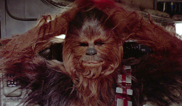 Chewbacca Rebel Spy Theory